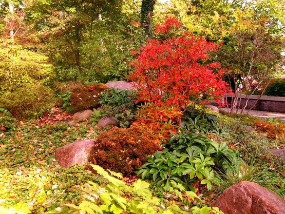 Kurpark Farbenpracht im Herbst