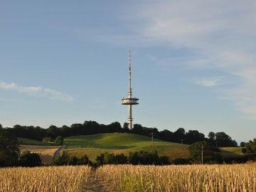 Bungsberg mit Aussichtsturm