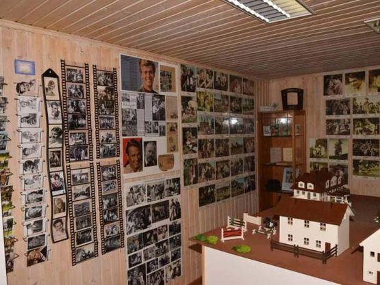 Filmplakate & Modell vom Immenhof