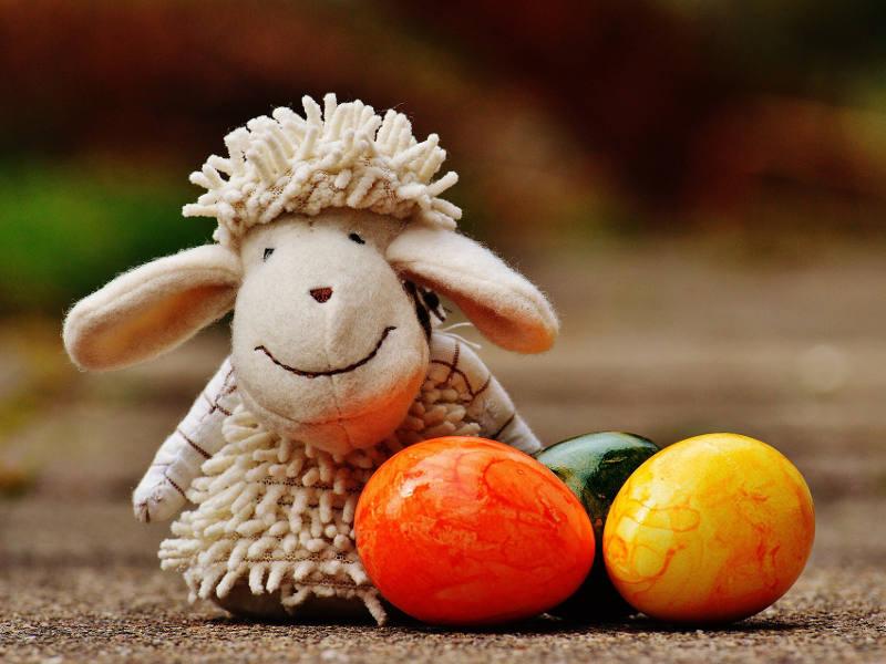 Osterferien Schaf mit Eiern
